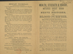 Advert For Dr. John Hamilton's Phospherous Treatment